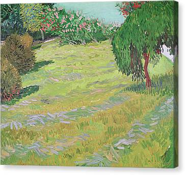 Field In Sunlight Canvas Print by Vincent van Gogh