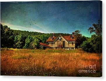 Field Of Broken Dreams Canvas Print by Lois Bryan