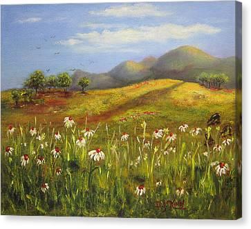 Field Of Daisies Canvas Print by Dottie Kinn