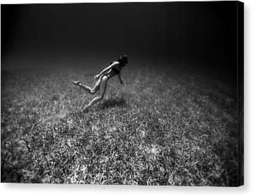 Apnea Canvas Print - Field Of Dreams by One ocean One breath
