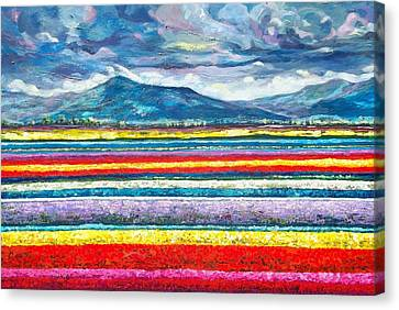 Field Of Dreams Canvas Print by Suzanne King