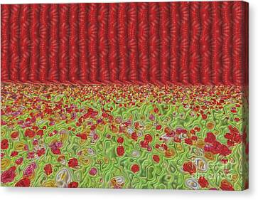 Field Of Flowers Abstract Canvas Print by Liane Wright