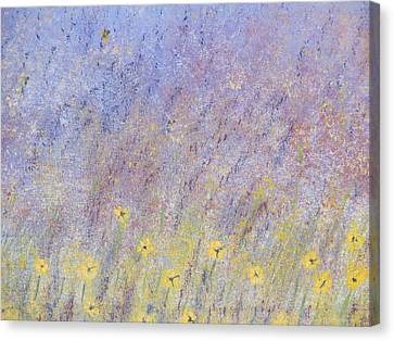 Field Of Flowers Canvas Print by Tim Townsend