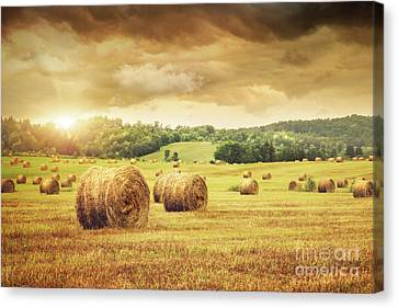 Field Of Freshly Bales Of Hay With Beautiful Sunset Canvas Print by Sandra Cunningham