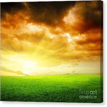 Field Of Grass Canvas Print by Boon Mee