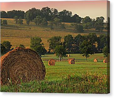 Field Of Hay Canvas Print by Steven  Michael