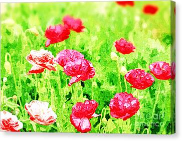 Field Of Painterly Red And Orange Poppies Canvas Print by Beverly Claire Kaiya