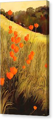 Field Of Poppies Canvas Print by Sue  Darius