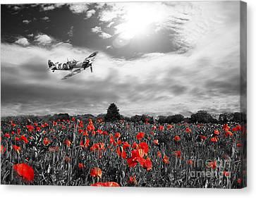 Field Of Red Canvas Print by J Biggadike