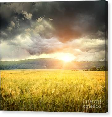 Field Of Wheat With Ominous Clouds  Canvas Print by Sandra Cunningham