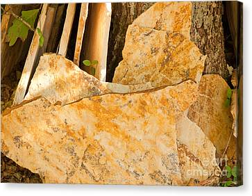 Canvas Print featuring the photograph Field Stones by Lena Wilhite