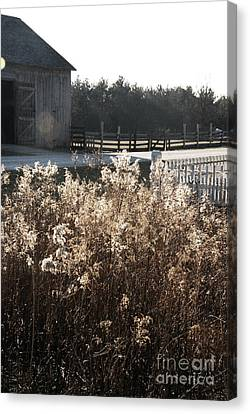 Field With Barn In The Background Canvas Print by Birgit Tyrrell
