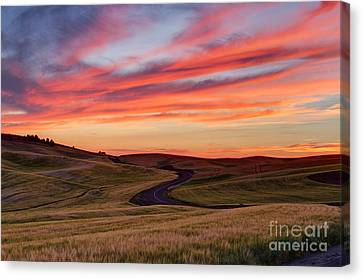 Fields And Dreams Canvas Print by Mark Kiver