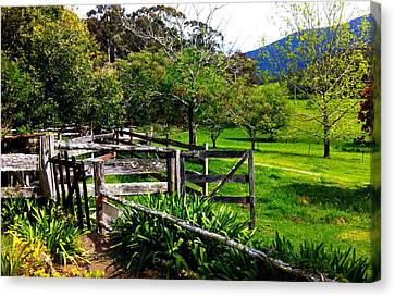 Fields And Fences Canvas Print
