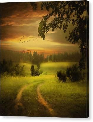 Fields Of Dreams Canvas Print