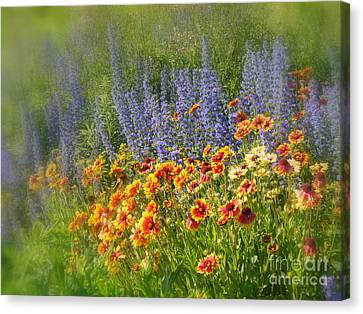 Fields Of Lavender And Orange Blanket Flowers Canvas Print by Lingfai Leung