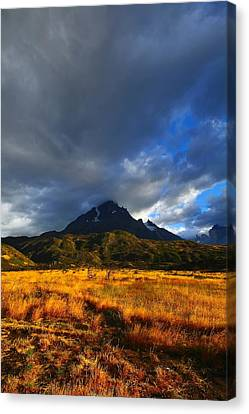 Fields Of Patagonia 2 Canvas Print