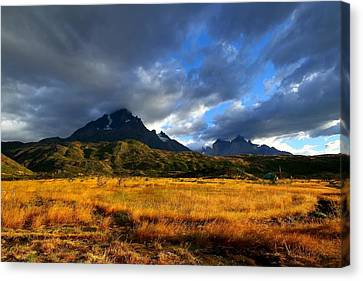 Fields Of Patagonia Canvas Print