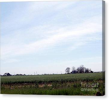 Canvas Print featuring the photograph Fields Of Source by Bobbee Rickard