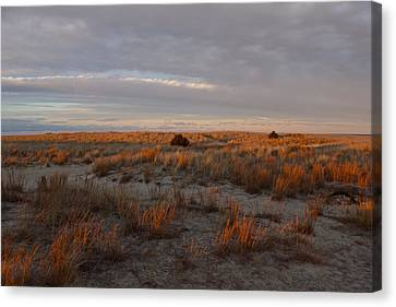 Canvas Print featuring the photograph Fiery Dunes by Amazing Jules