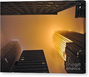 Fiery Look Up Canvas Print by Graham Taylor