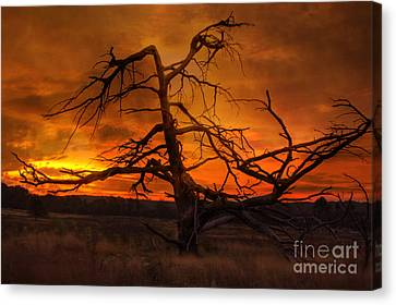 Fiery Sunrise Canvas Print