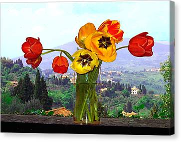 Fiesole Number One Canvas Print