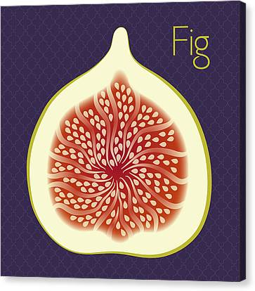Fig Canvas Print by Christy Beckwith
