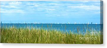 Figawi Sailboat Race Canvas Print by Diane Diederich