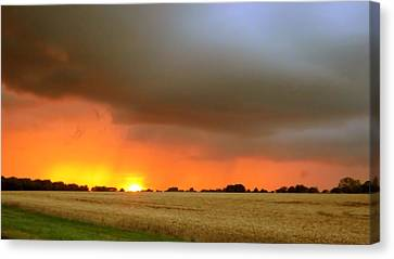 Fighting Sun Canvas Print by Dave Woodbridge