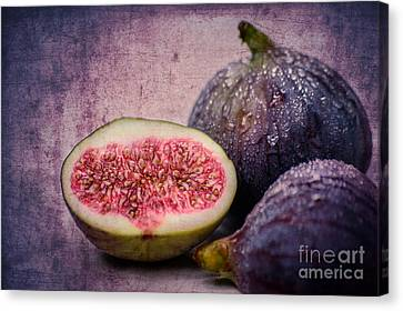 Figs Canvas Print by Hannes Cmarits