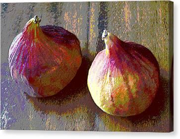 Figs Still Life Pop Art Canvas Print by Ben and Raisa Gertsberg