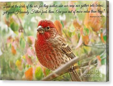Finch With Verse New Version Canvas Print by Debbie Portwood