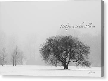 Find Peace In The Stillness Canvas Print by Ed Cilley