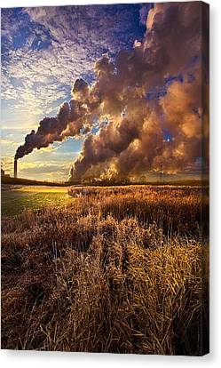 Finding The Beauty Within Canvas Print by Phil Koch