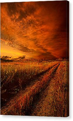 Picnic Table Canvas Print - Finding The Way Home by Phil Koch