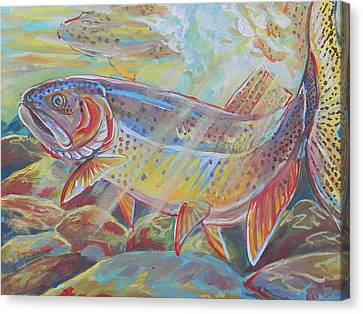 Fine Spotted Cutthroat Trout Canvas Print by Jenn Cunningham