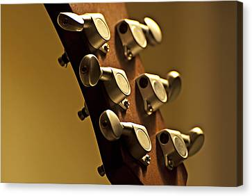 Finely Tuned Canvas Print by Christopher Gaston