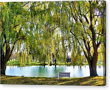Finger Lakes Weeping Willows Canvas Print by Mitchell R Grosky