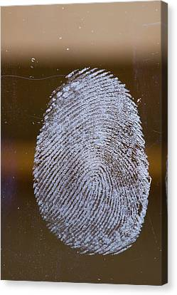 Fingerprint On Glass Canvas Print by Ashley Cooper