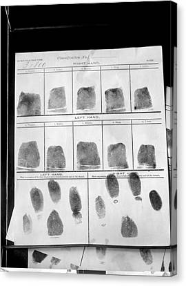 Ewing Canvas Print - Fingerprints Record, 1912 by Science Photo Library
