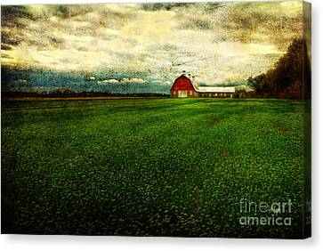 Finished Canvas Print by Lois Bryan
