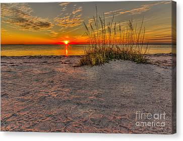 Finishing Moments Canvas Print by Marvin Spates