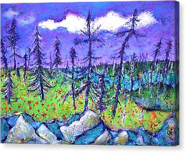 Fir Trees In The Taiga Canvas Print by Ion vincent DAnu