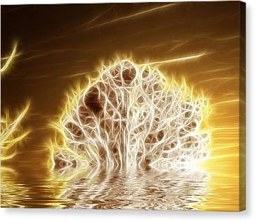 Fire And Water Canvas Print by Sharon Lisa Clarke