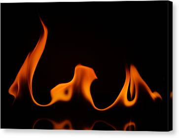 Fire Dance Canvas Print by Chris Fraser