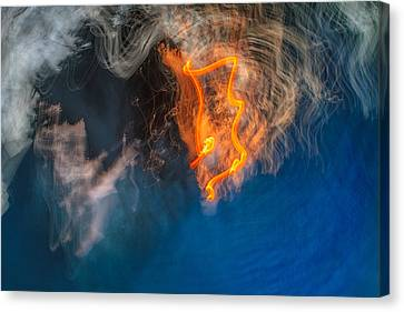 Fire Emblem Canvas Print by Steve Belovarich