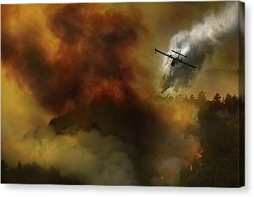 Firefighters Canvas Print - Fire In National Park Of Cilento (sa) - Italy by Antonio Grambone