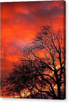 Fire In The Sky Canvas Print by Johan Hakansson