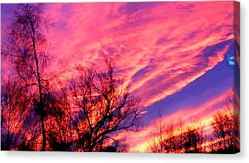 Fire In The Sky Canvas Print by Randy Saragosa